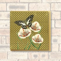 Greeting Card-Butterfly