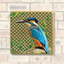 Greeting Card-Kingfisher