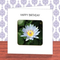 Flower Coaster Card 7
