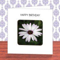 Flower Coaster Card 8