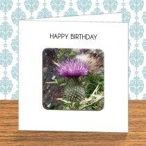 Thistle Coaster Card 2