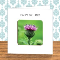 Thistle Coaster Card 5