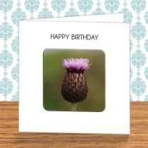 Thistle Coaster Card 9