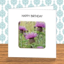 Thistle Coaster Card 11