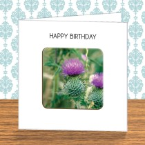 Thistle Coaster Card 12