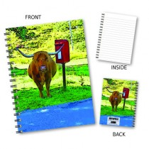 Highland Cow/Postbox Notebook