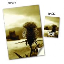 Thistle Image Notebook