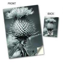 Thistle Design Notebook