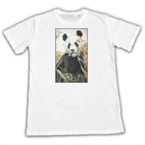 Photo Transfer T-Shirts