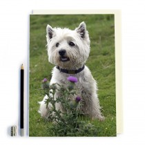 Dog & Thistle Notebook