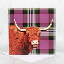 Tartan Highland Cow Greeting Card