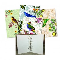 Vintage Bird Assorted Notebooks